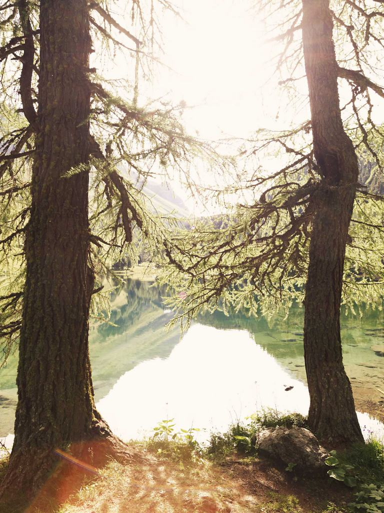 Daniel-Hager-Landscape-021.jpg