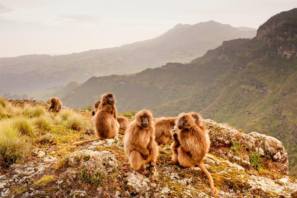 045-Ethiopia-109-v2.jpg