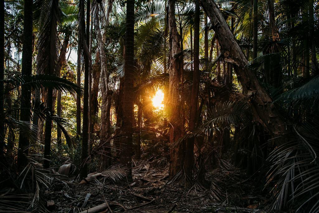 Daniel-Hager-Photography-Film-Zurich-Switzerland-2019-HKG-AUSTRALIA-3113.jpg