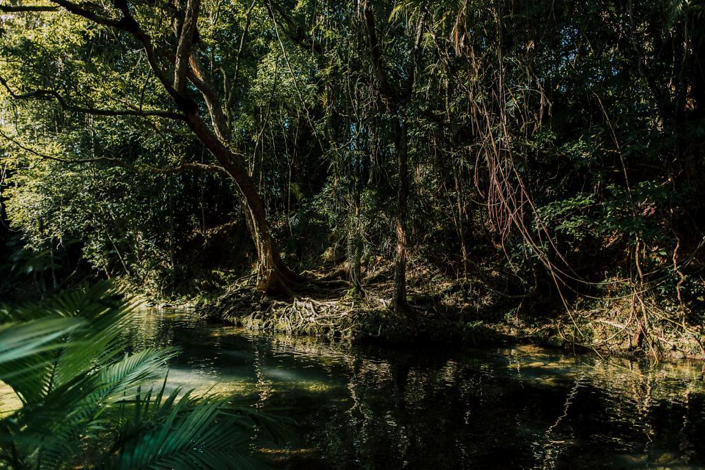 Daniel-Hager-Photography-Film-Zurich-Switzerland-2019-HKG-AUSTRALIA-7690.jpg